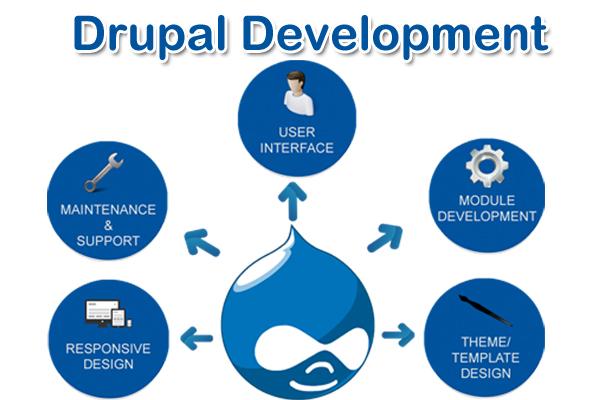 Drupal-development-pixxelznet