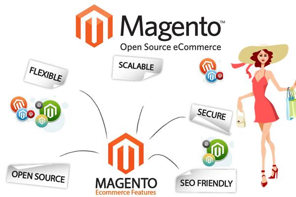 Image result for Magento Development