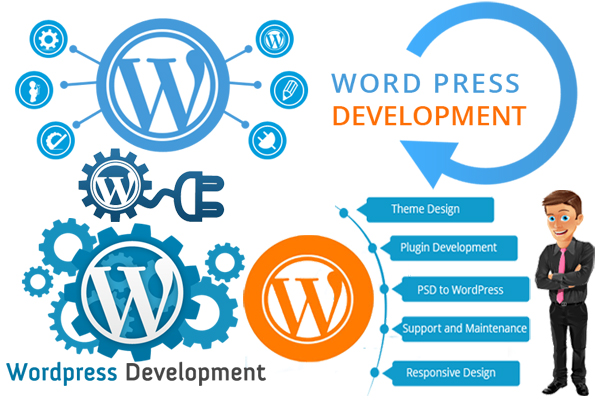 Image result for wordpress development services