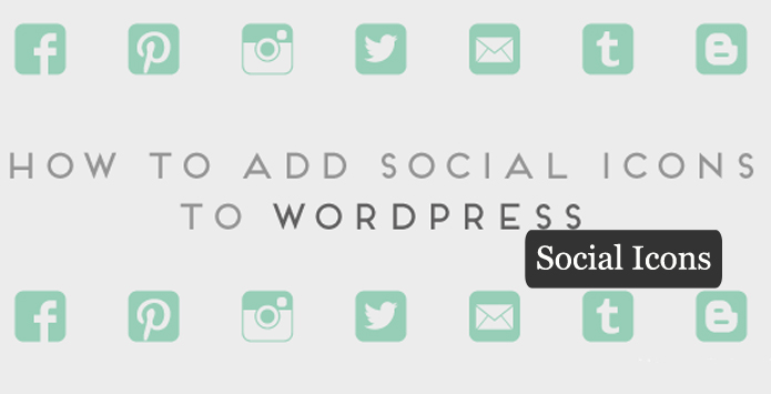 Social Icon Wordpress Plugin